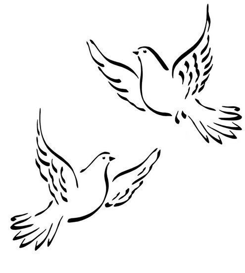 Comment dessiner une colombe - Comment dessiner une colombe ...